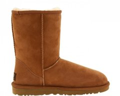 "UGG CLASSIC SHORT BOOT ""CHESTNUT"", 41"